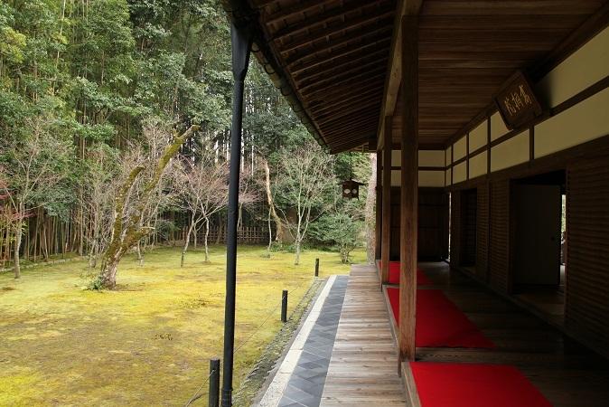2013 京都大徳寺高桐院 070.JPG